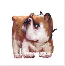 Animals Art Print 211776770