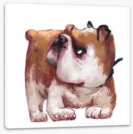 Animals Stretched Canvas 211776770