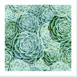 Leaf Art Print 213680232