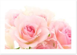 Flowers Art Print 215965166