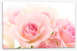 Flowers Stretched Canvas 215965166