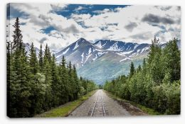 North America Stretched Canvas 216335121