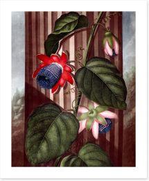 Vintage Art Print 221102457