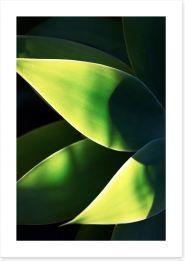Leaves Art Print 227190602
