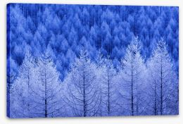 Winter Stretched Canvas 228236363