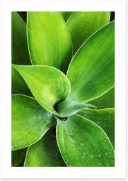 Leaves Art Print 228891937