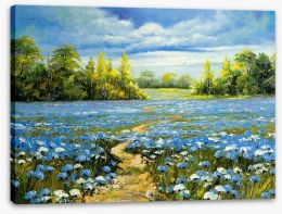 Blossoming cornflowers Stretched Canvas 23864267