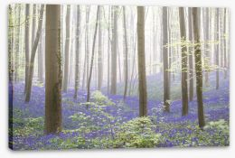 Forests Stretched Canvas 250680103