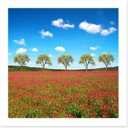 Meadows Art Print 256966420