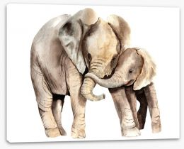 Animals Stretched Canvas 257614372