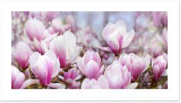 Spring Art Print 257810021
