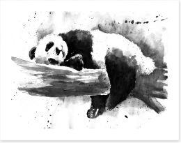 Animals Art Print 268333986