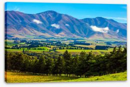 New Zealand Stretched Canvas 270584283
