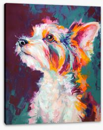 Animals Stretched Canvas 273226927
