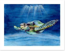 Green sea turtle Art Print 279130391