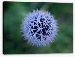 Flowers Stretched Canvas 280278765