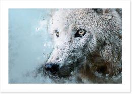 Animals Art Print 290551963