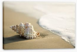Beaches Stretched Canvas 2985024