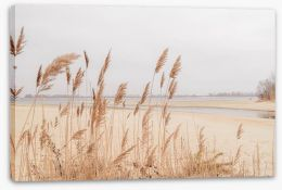 Winter Stretched Canvas 323801072