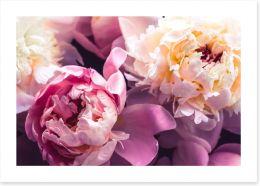 Flowers Art Print 358626363