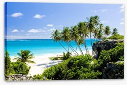 Beaches Stretched Canvas 37298356