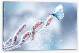 Winter Stretched Canvas 405246995