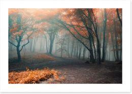 Red leaf forest fog