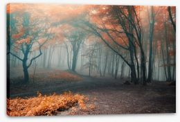 Red leaf forest fog