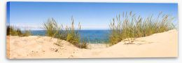 Beaches Stretched Canvas 429938560