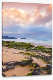 Beaches Stretched Canvas 433591044