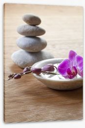 Pampering orchid Stretched Canvas 46596649