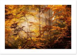 Autumn Art Print 47162004