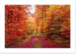 The vibrant forest Art Print 47932610
