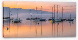 Sailboat sunrise Stretched Canvas 48100774
