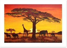 African sunset Art Print 48838915