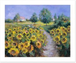 The sunflower path
