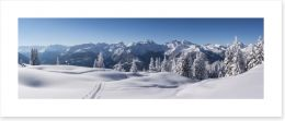 Alpine perfection