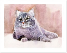 Animals Art Print 52106666