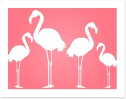 White flamingoes