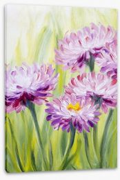 Pink daisy bliss Stretched Canvas 52721565