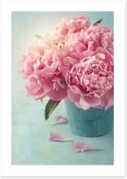 Vintage pink peony