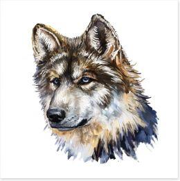 Wild wolf Art Print 54272072