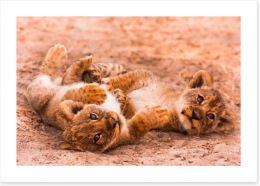 Playful lion cubs Art Print 55023096