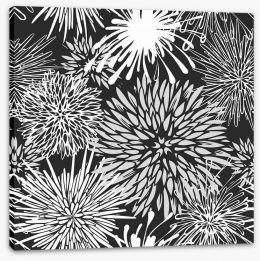 Chrysanthemum burst Stretched Canvas 55221043
