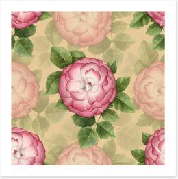 Vintage dog-rose