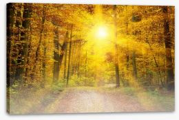 Forests Stretched Canvas 56938674