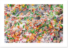Autumn Art Print 57453890