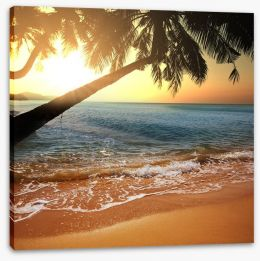Sunset between the palms Stretched Canvas 57786754