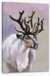 Artic moose