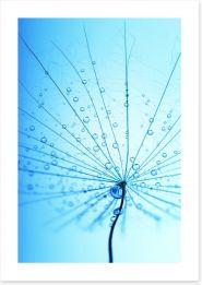 Droplets Art Print 58244616